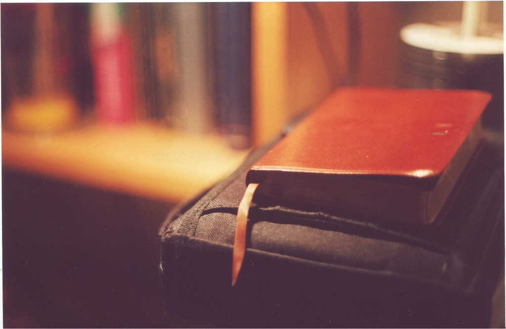 Bible Verses on Peace: 12 Important Scriptures That Explain Why