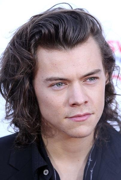 Harry Styles Visits Australia