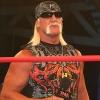 Photo of Hulk Hogan