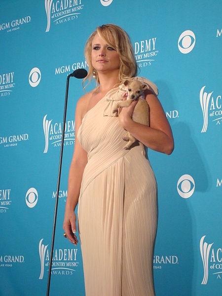 Miranda Lambert Attends Academy of Country Music Awards