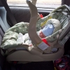 Photo of Infant in Car Seat