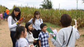 Atlanta corn fields