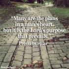 Pastor Kim prayer37