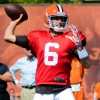 Brian Hoyer Trade Rumors