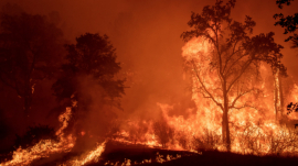 Creek Fire Explodes and Burns down the area