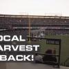SoCal Harvest 2021