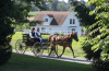 Amish man and woman riding a horse-driven carriage